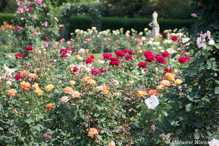 Hershey Gardens Rose Garden - 2