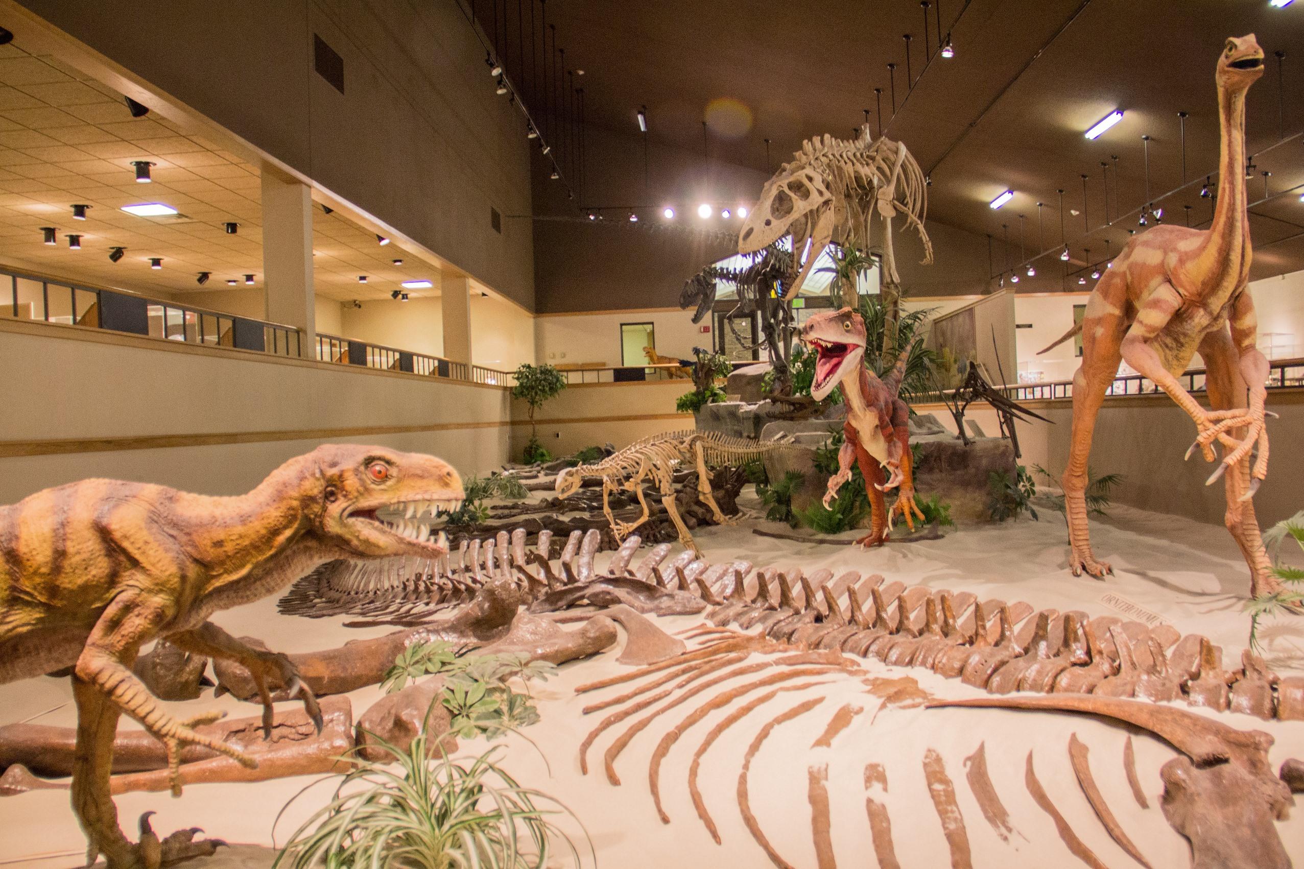 Dickinson Dinosaur Museum