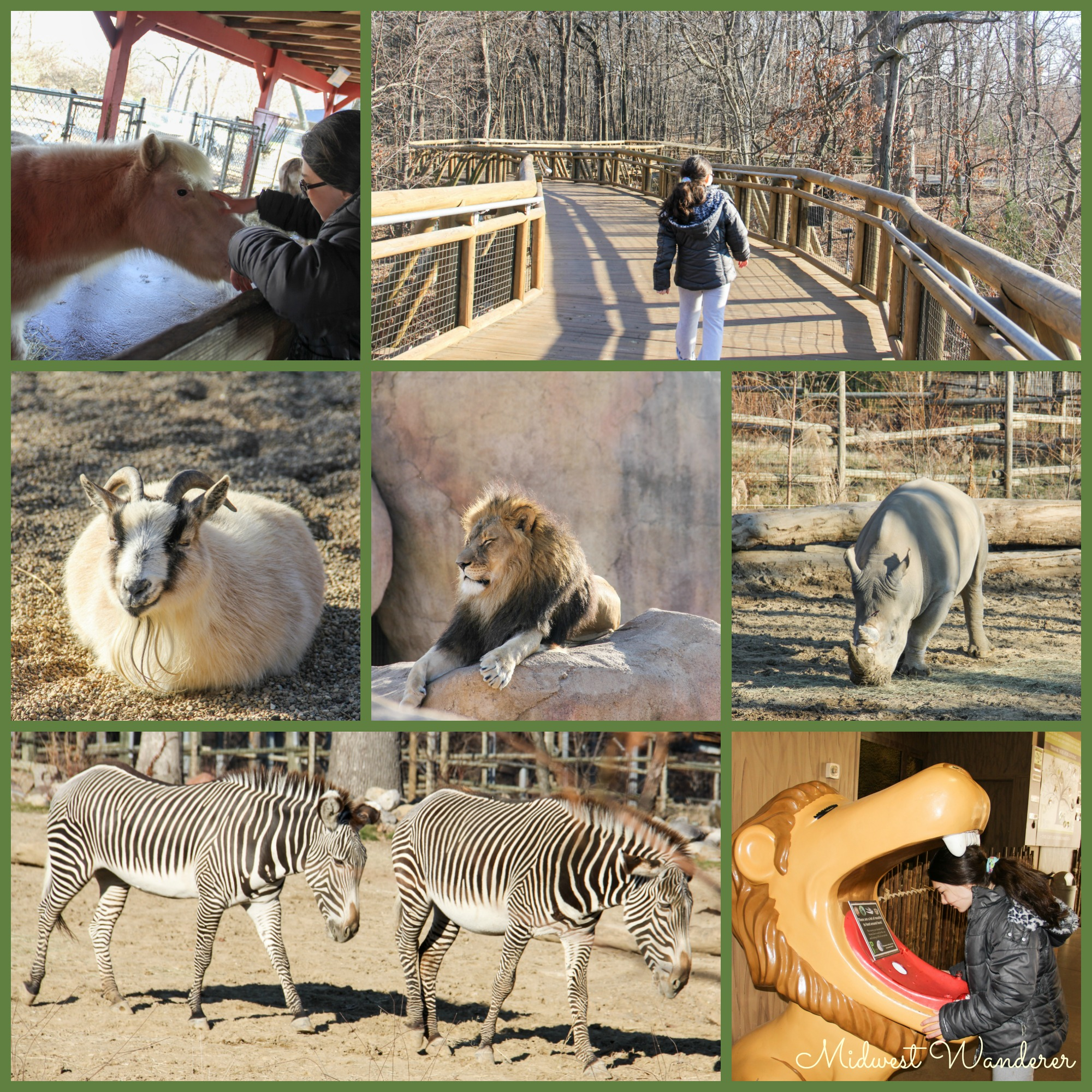 Peoria Zoo - Small Midwest Zoos