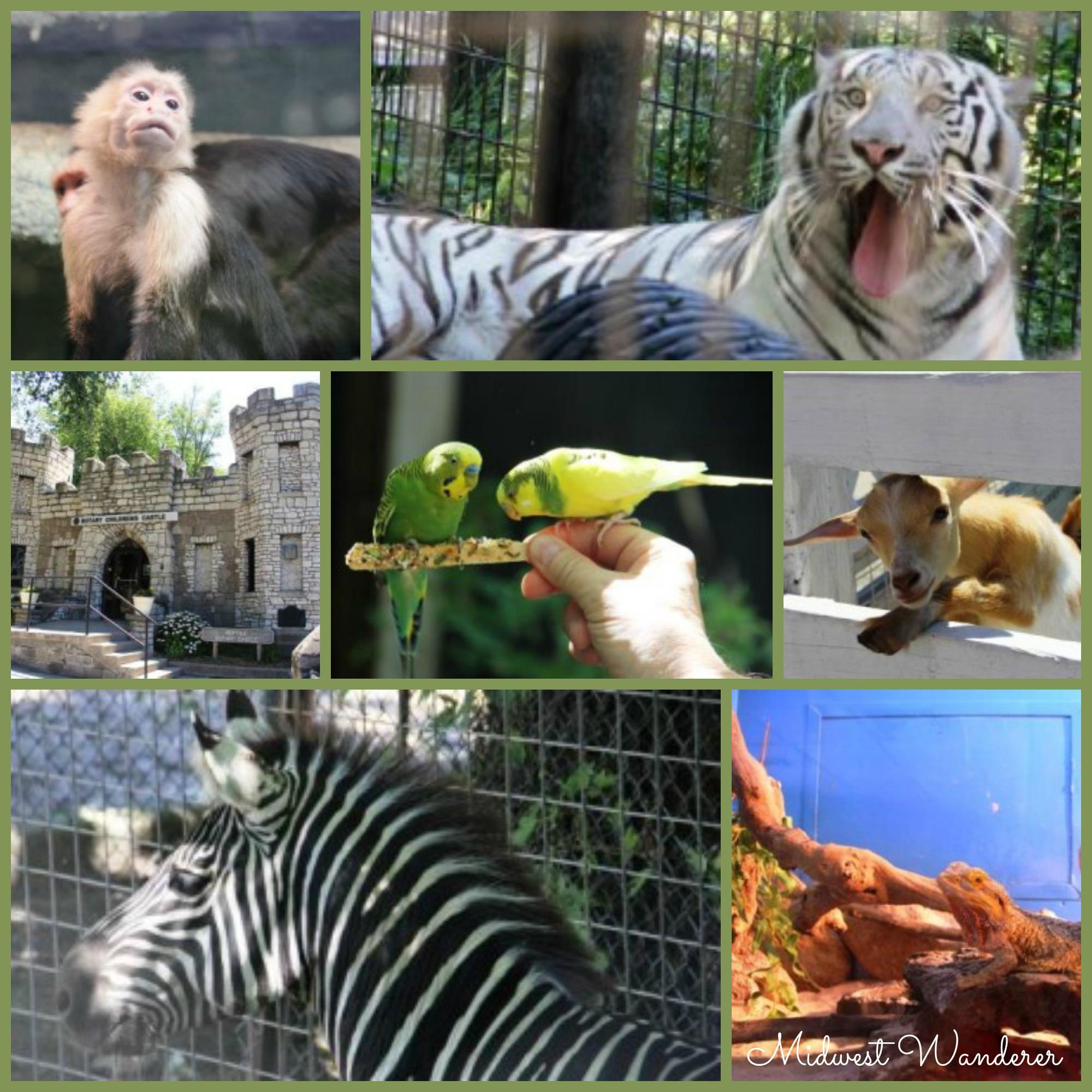 Washington Park Zoo - Small Midwest Zoos
