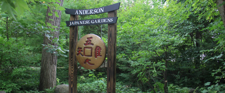 A Stroll Through Anderson Japanese Gardens