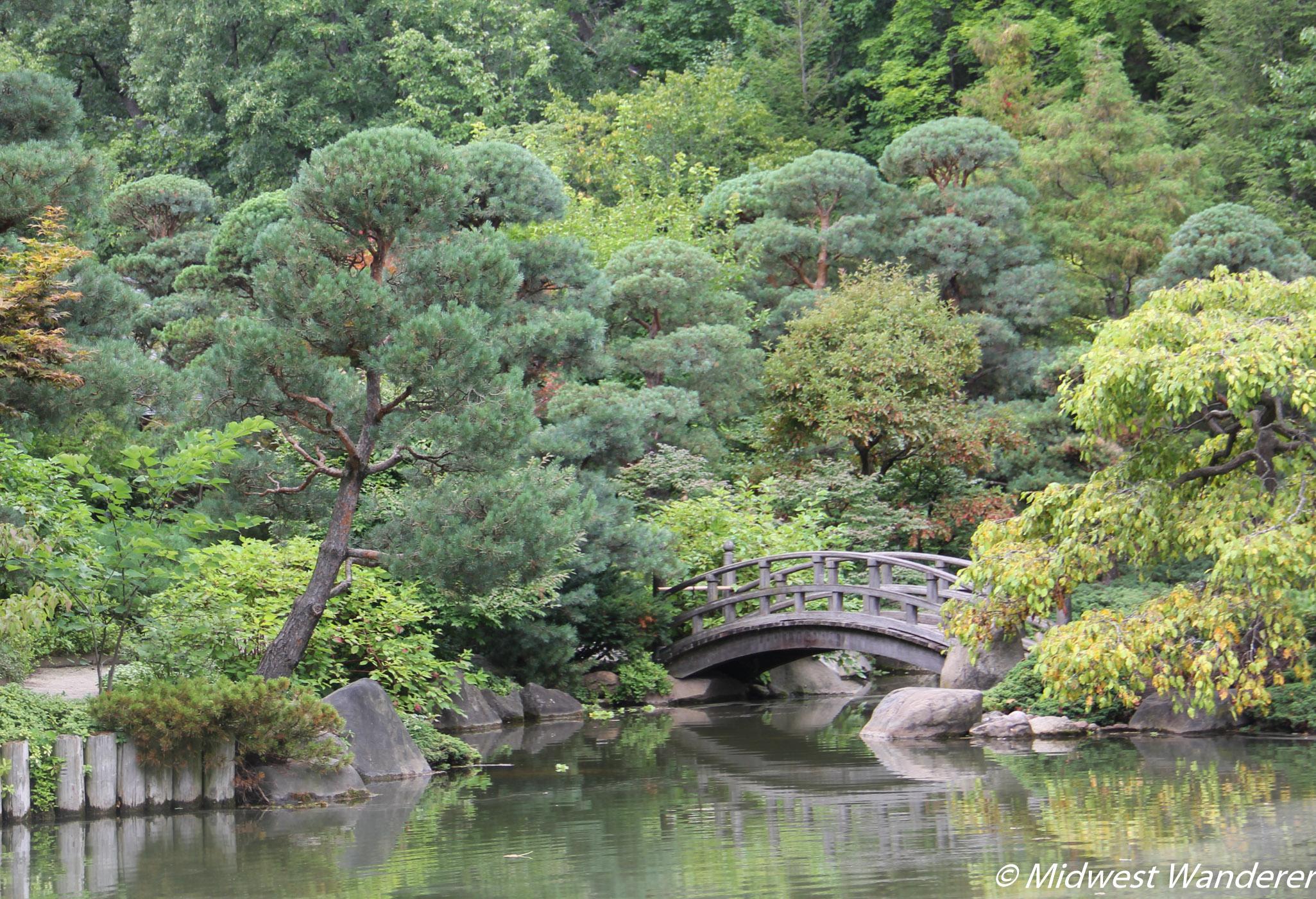 Anderson Japanese Gardens - Garden Bridge
