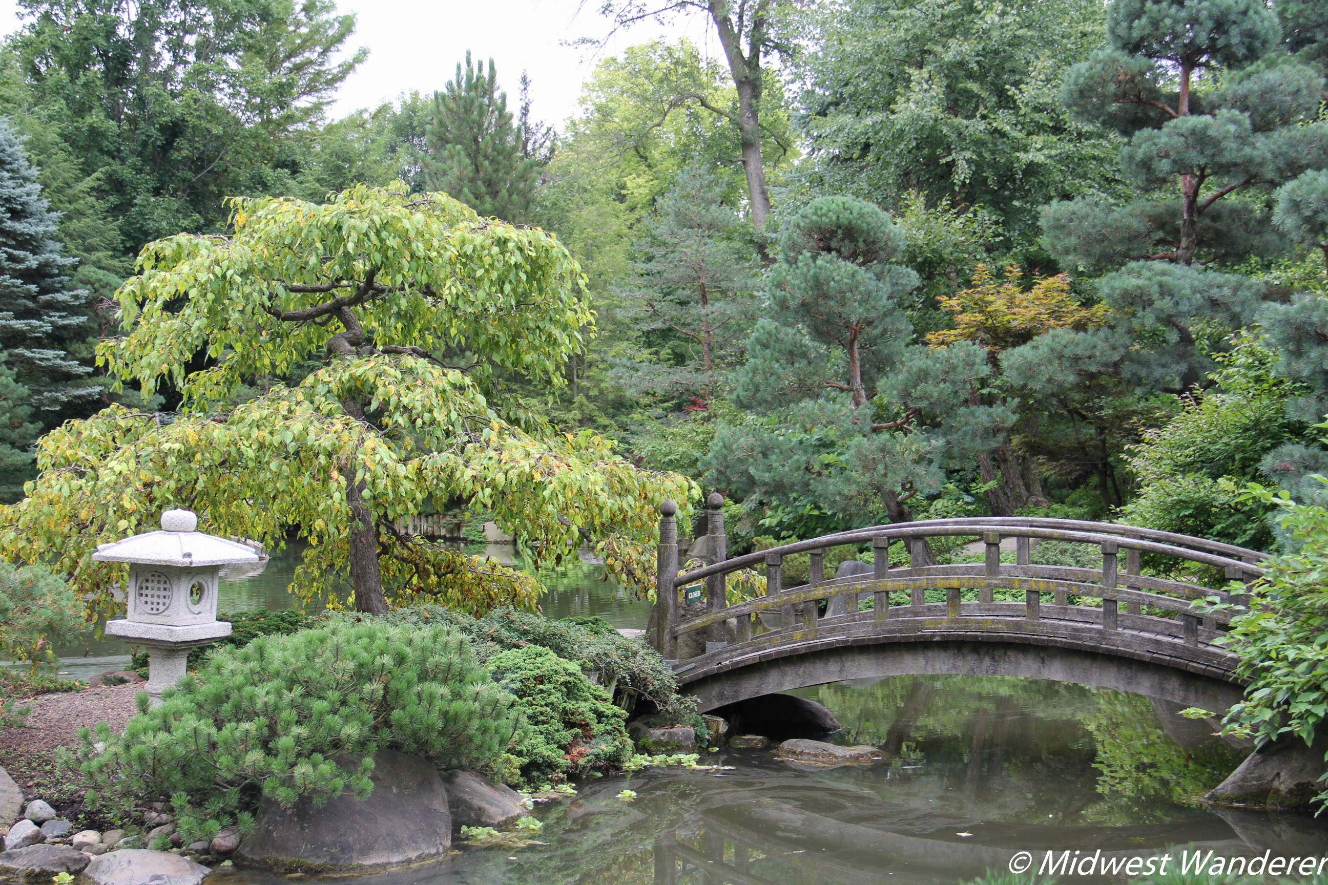 Anderson Japanese Gardens - Bridge and Island