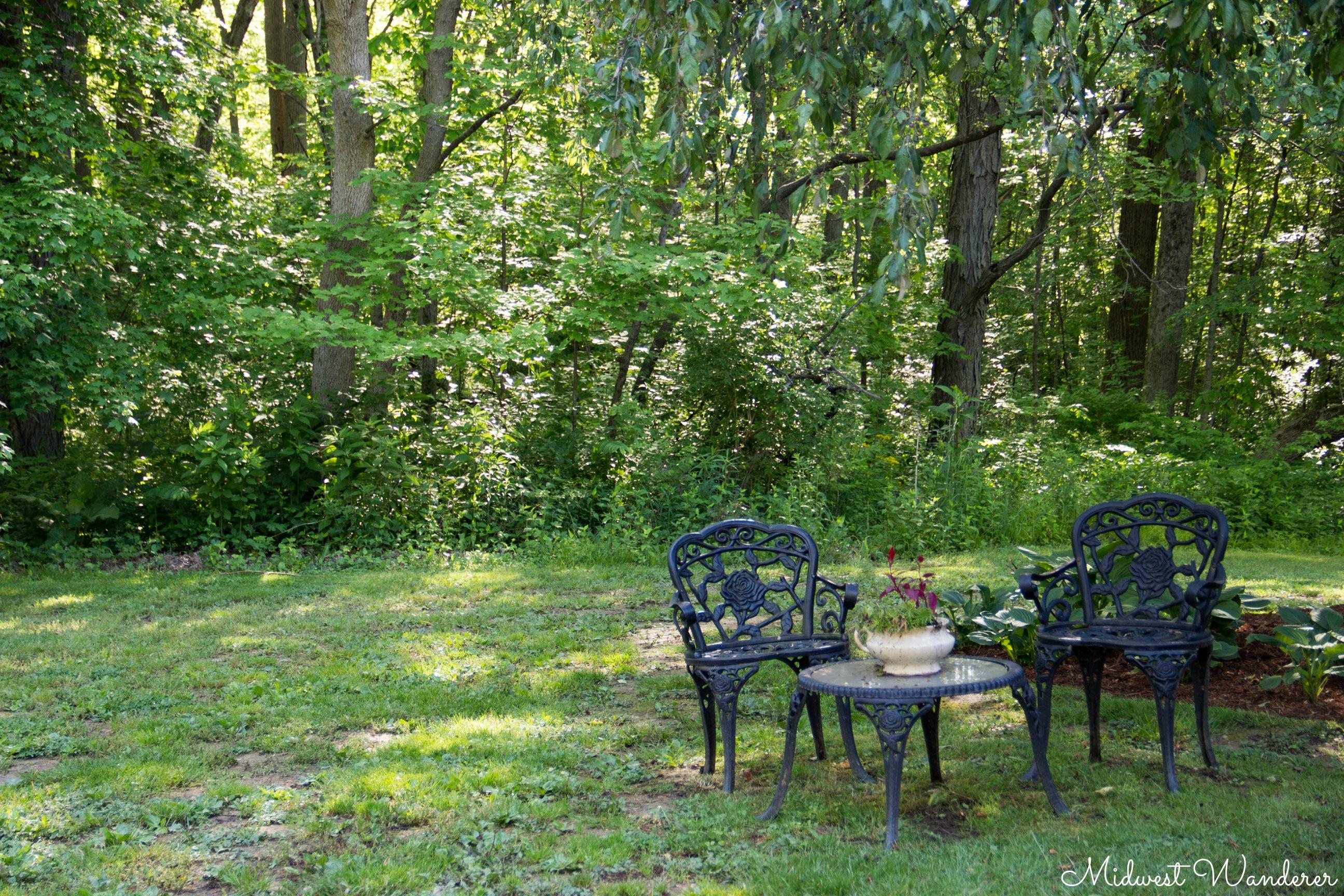 Seldom Scene B&B wooded surroundings