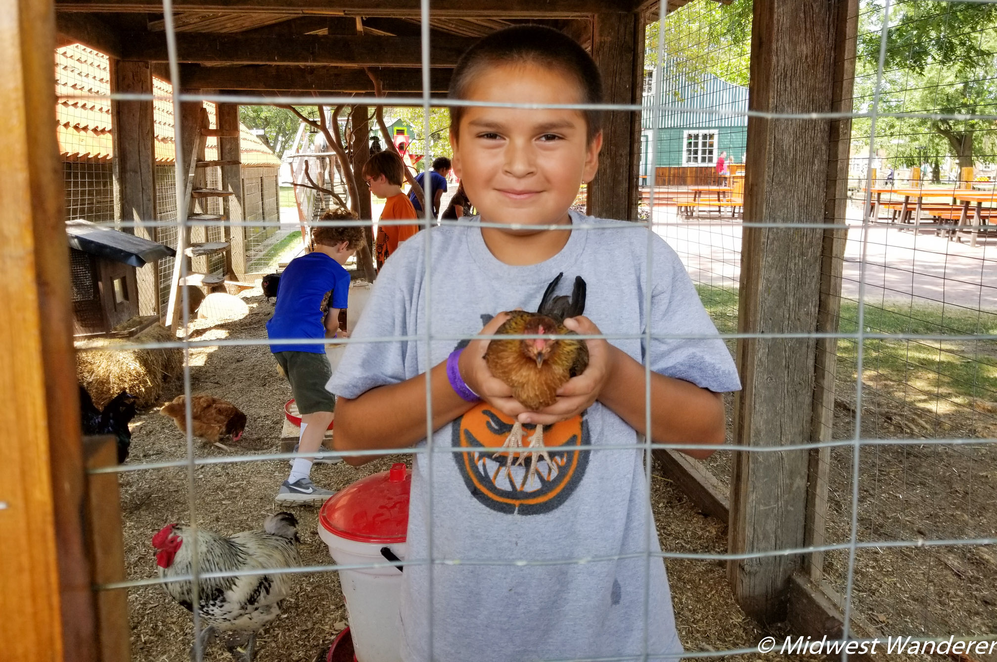 Petting zoo at Dutch Village
