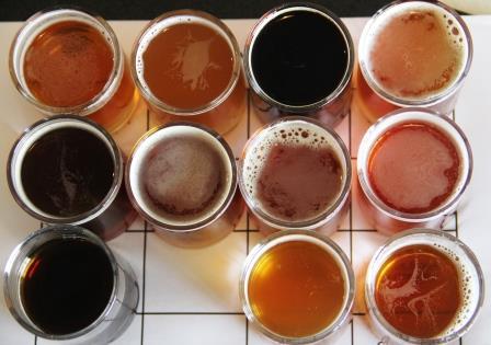 Flight of beer at Black Swan Brewery