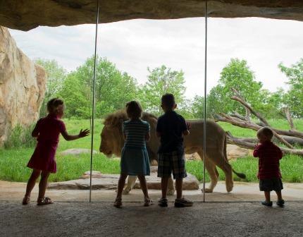 Fort-Wayne-Childrens-Zoo-8