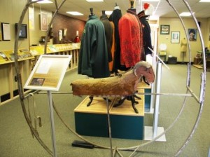 Ferris Wheel Goat