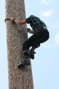 Descending the pole