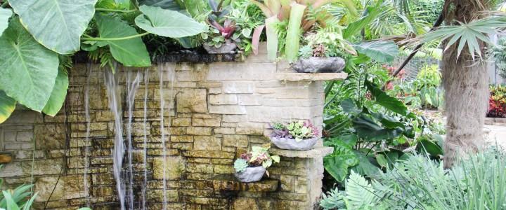 Exploring Rockford's Nicholas Conservatory & Gardens