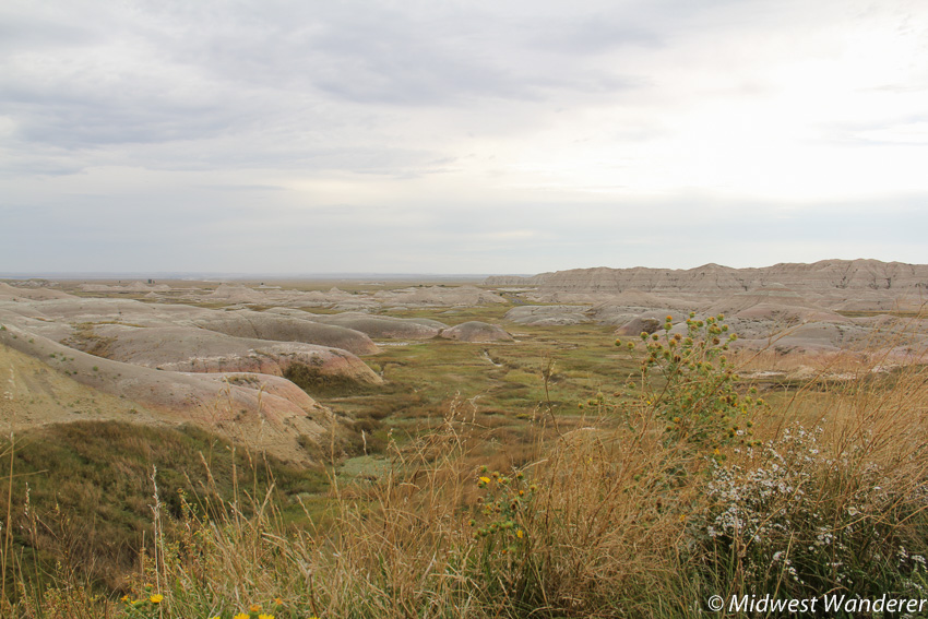 Badlands National Park grassy area