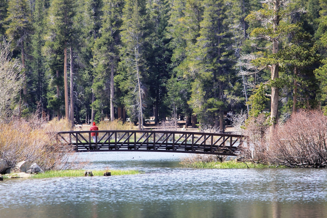 Bridge at Twin Lakes