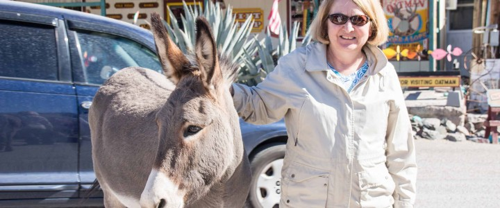 Oatman: Burros, Route 66 and a Honeymoon Suite