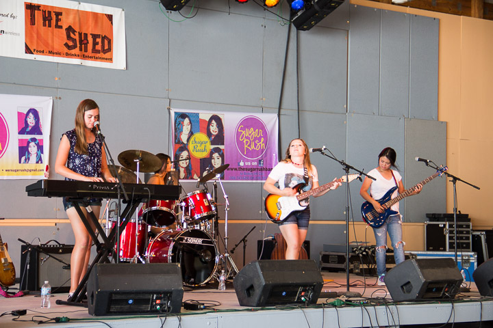 Music at the Illinois State Fair