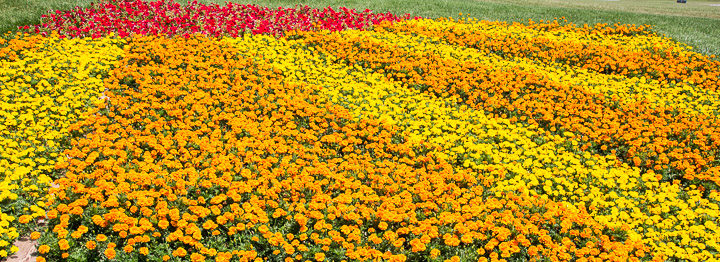 Exploring World's Only Quilt Gardens Tour