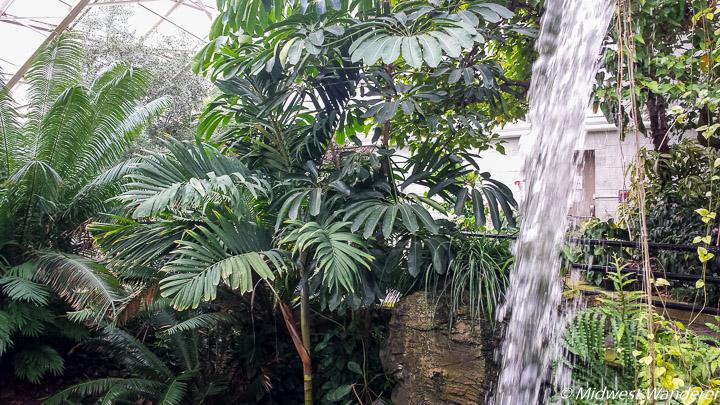 Foellinger-Freimann Botanical Conservatory, Fort Wayne