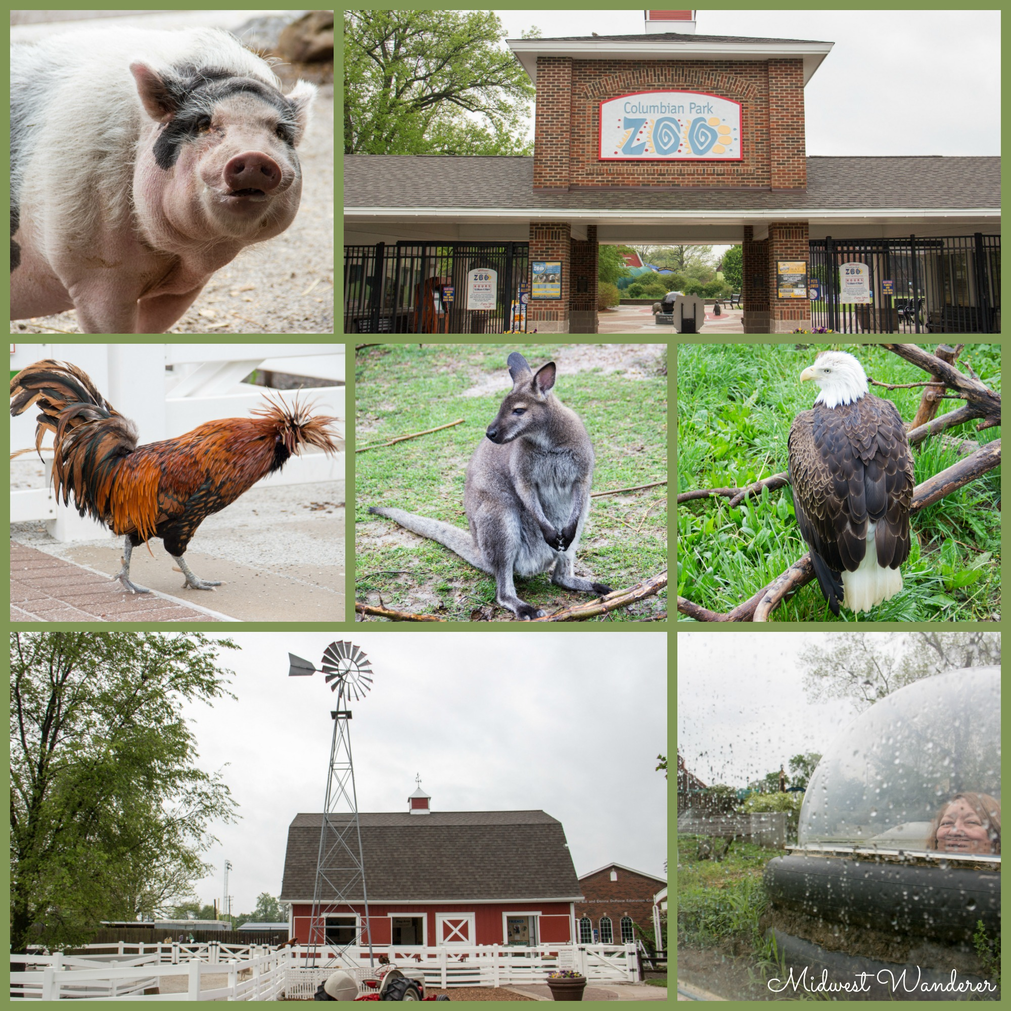 Columbian Park Zoo - Small Midwest Zoos