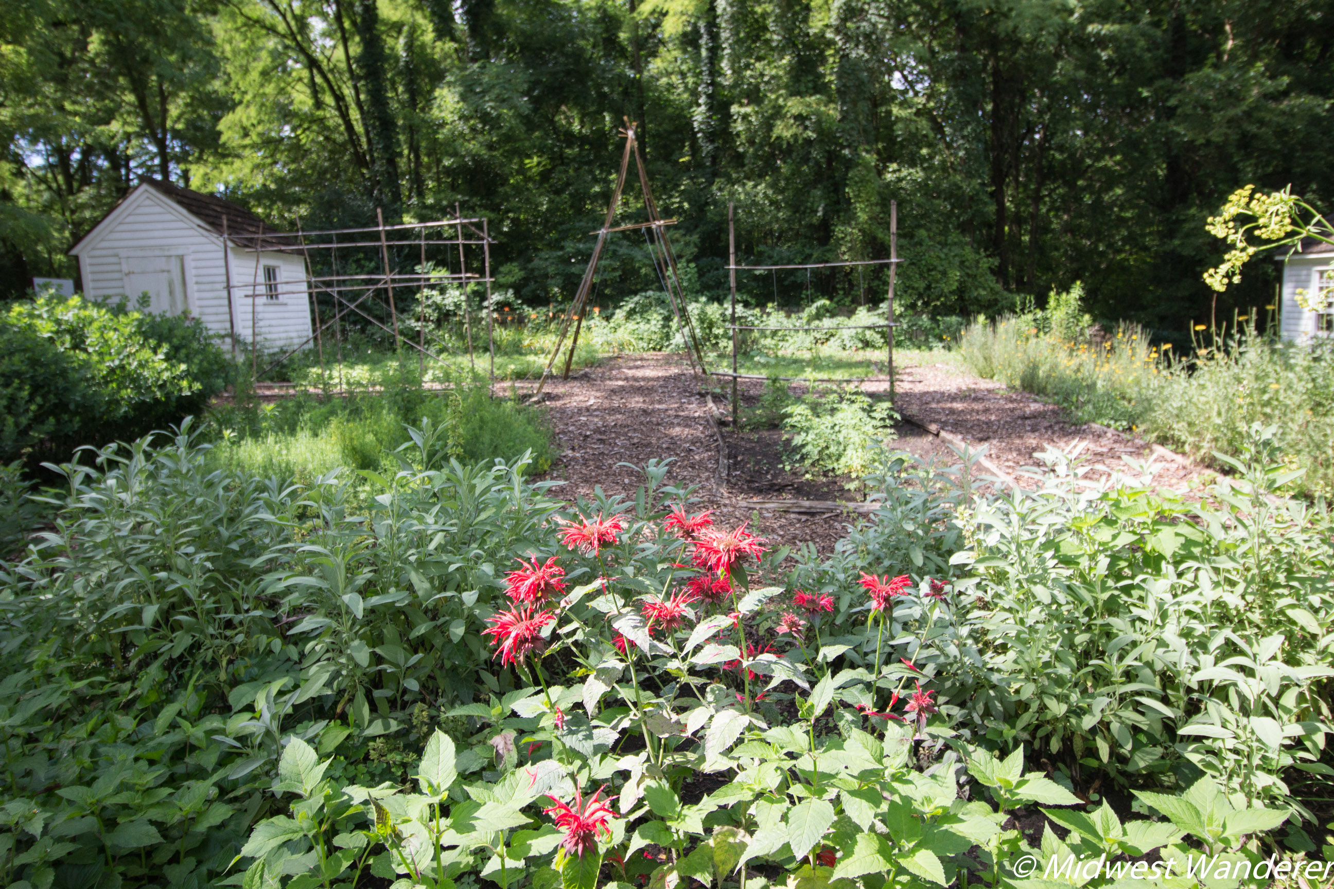 Conner Prairie House - Heirloom Garden