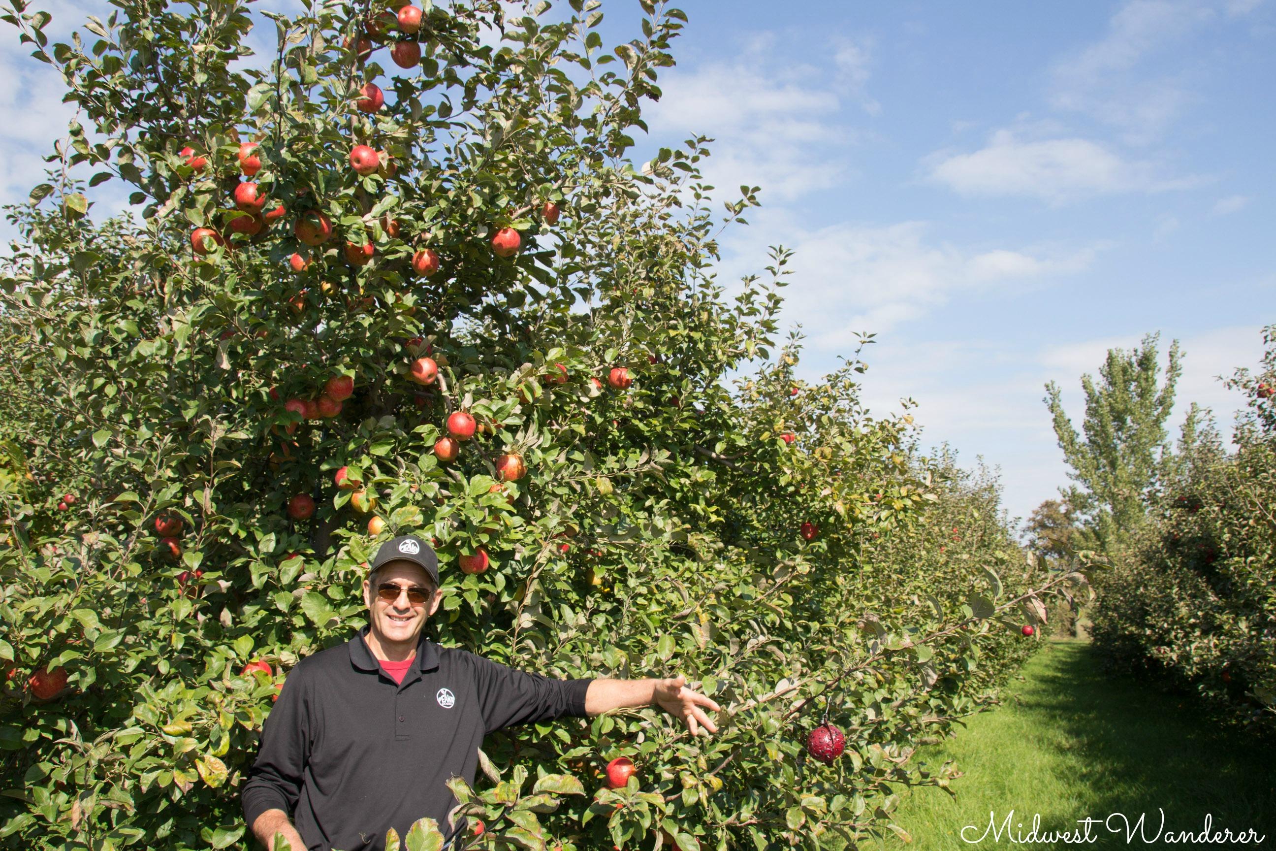 Al Peake - Peake Orchards