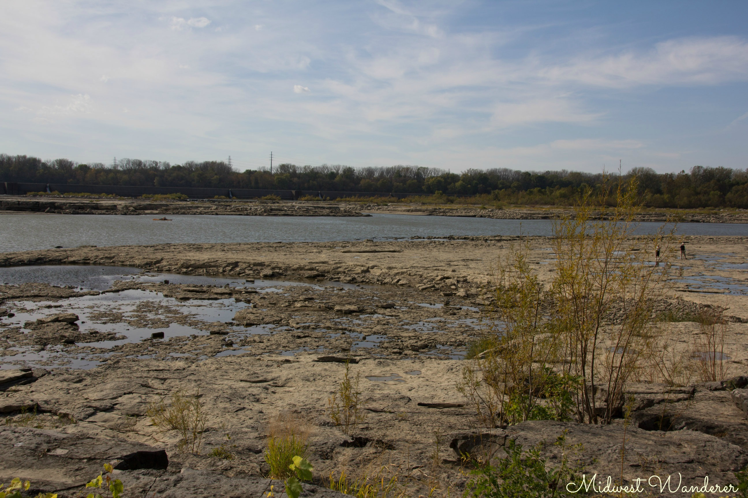 Falls of the Ohio Fossil Beds - 1
