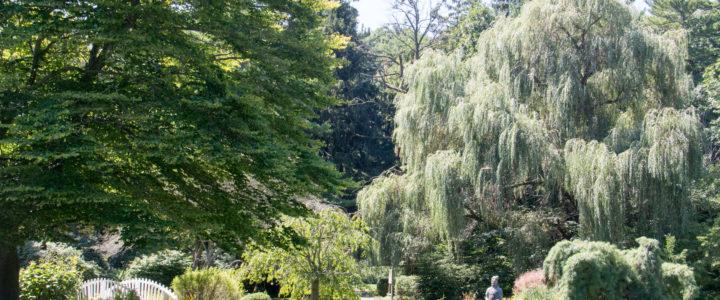 Exploring Friendship Botanic Gardens