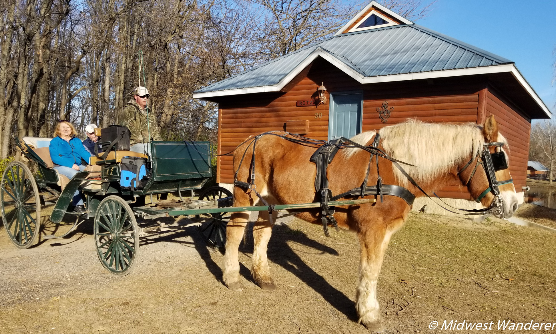 Serenity Springs brings you to your cabin by horse and carriage