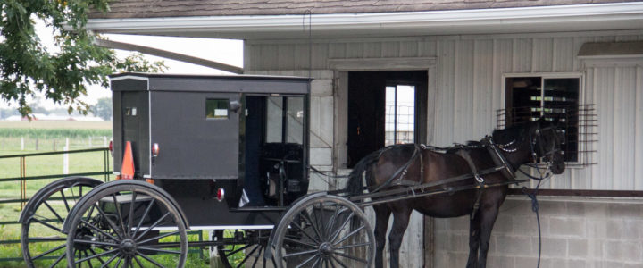 Blue Gate Amish Tours: Evening in an Amish Home