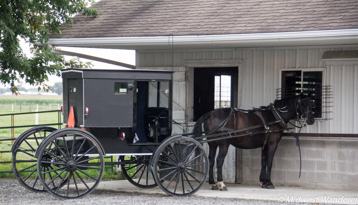 Amish horse and buggy, Blue Gate Amish Tours