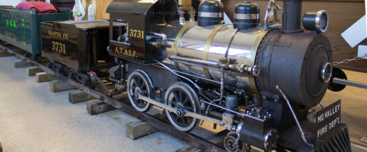Watson Steam Train: Miniature Railroad Rides
